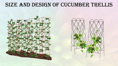 buying guide for cucumber trellis