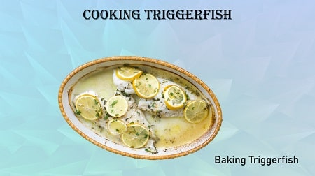 Cooking Triggerfish