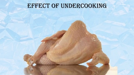 rubbery chicken over or undercooked